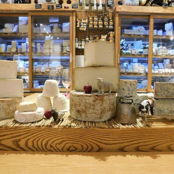 cata de quesos asturianos