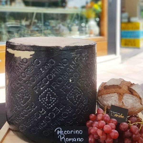Cata quesos romanos